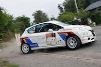 Peugeot tordner frem i rally-DM