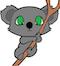 koalabear