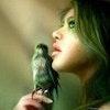 thelittleblubird